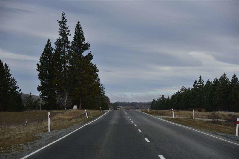 プカキ湖周辺の道路