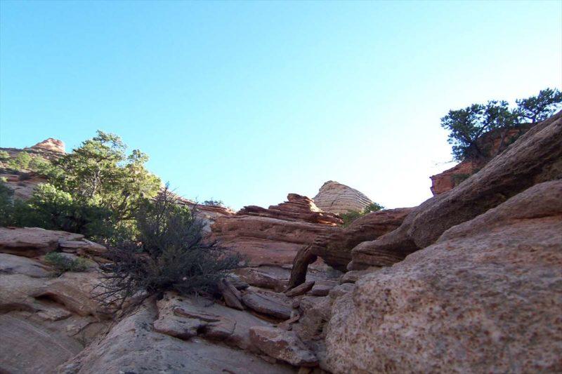 トレイル後半でひらけた岩肌の風景